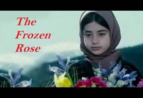 पिता व पुत्री के सुंदर रिश्ते पर आधारित 'The Frozen Rose'